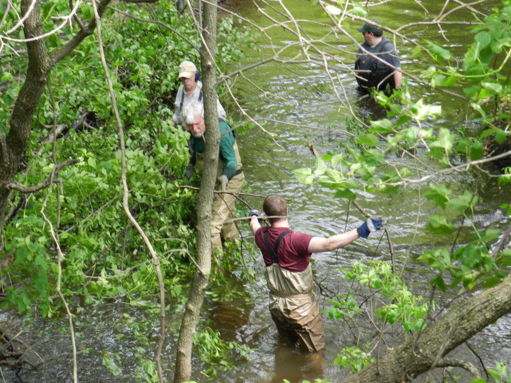 Little rock creek minnesota trout unlimited for Trout fishing mn