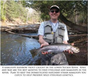 Fishing Our Habitat Improvement: The Sucker River – Minnesota Trout